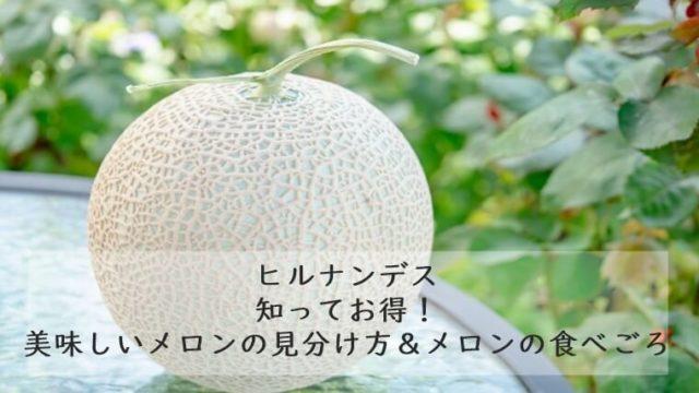 ヒルナンデス 美味しいメロンの見分け方&メロンの食べごろ シルクメロン 7/16
